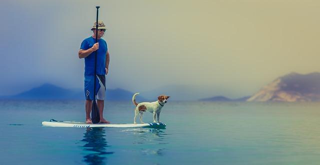 Koiran kanssa